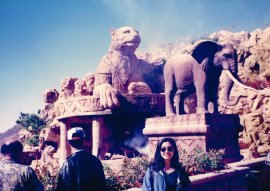 Sun City 1994 (2)