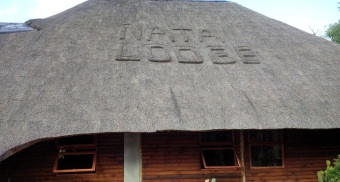 Nata - Lodge 01
