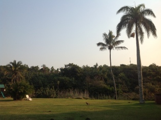 San Lameer Resort (5)