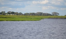 chobe-river-11-boats-etc-10