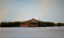 chobe-river-12-bar-1