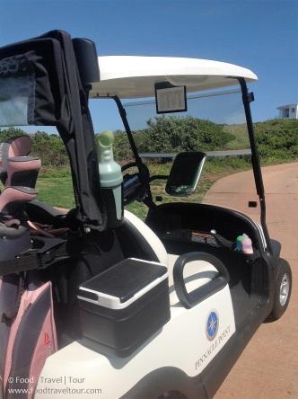 pinnacle-point-golf-game-4