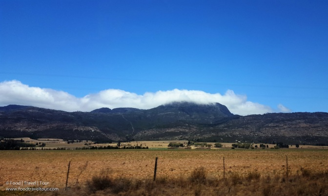 garden-route-2016-driving-thru-outeniqua-pass-14