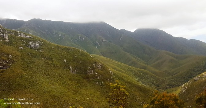 garden-route-2016-driving-thru-outeniqua-pass-24