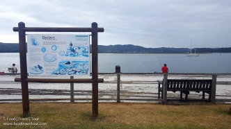 knysna-thesen-islands-01-9