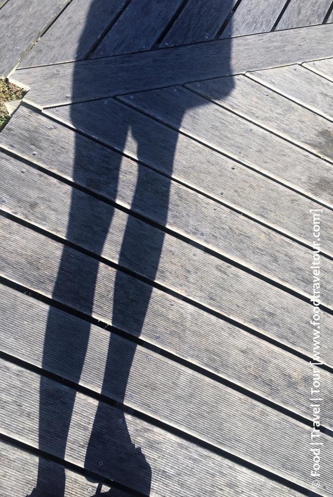 shadow-02