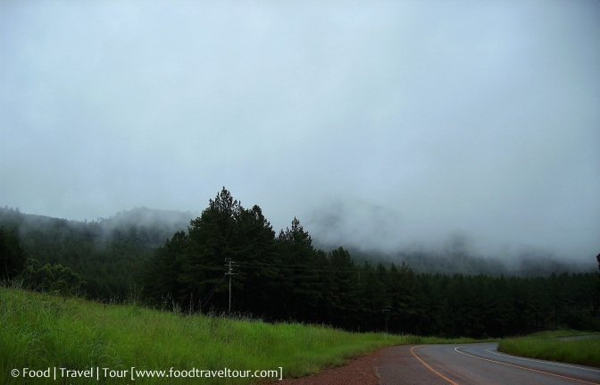 Mpumalanga Road