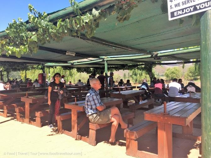 Garden Route Camel Farm 20161224 (6)