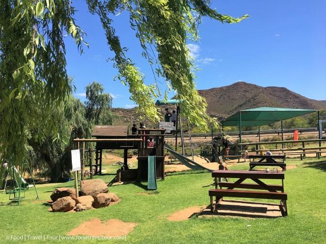 Garden Route Camel Farm 20161224 (7)