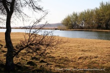Travel Africa (SA) - Dullstroom 06 Other (11)
