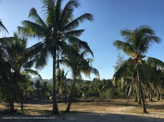Travel Asia - Philippines (Batangas) 02 Beach (13)