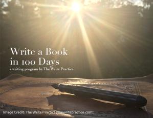a novel in 100 days